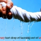 Squeeze every last drop of learning out of everylesson